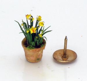 24th Scale Daffodils